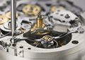 TOURBOGRAPH PERPETUAL ALS Assembly L133.1 tourbillon bridge A4 1573841.jpg